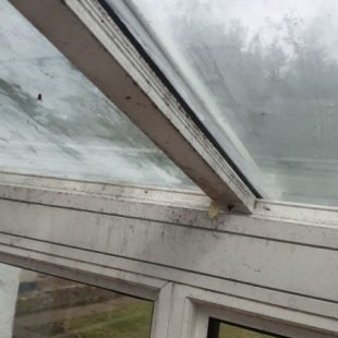 Before Cleaning - Conservatory Cleaning by N Clark Window Cleaning Ltd